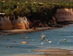 Justiça suspende implantação de cerca em área particular no Parque Estadual Mata da Pipa