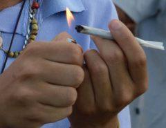 Fiocruz: 7,7% dos brasileiros usaram maconha pelo menos uma vez