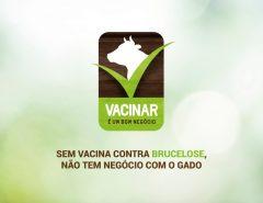 Campanha de vacinação contra a Brucelose começou nesta quinta-feira (01)