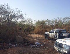 Corpo sem cabeça e com as mãos amarradas é encontrado dentro de matagal em Mossoró, RN