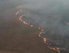 Grupo de WhatsApp contratou motoqueiros para incendiar floresta