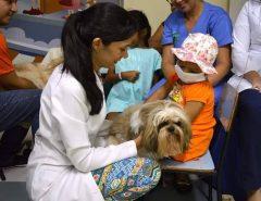 Vereadores aprovam projeto que permite visita de animais a pacientes internados em hospitais de Natal