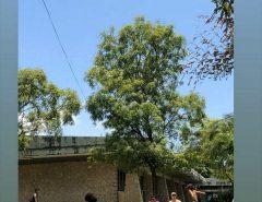 alunos com trajes de banho 'pegando sol' em suposta tarde de aula na UFRN