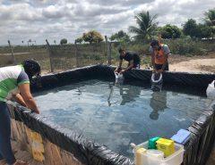 EAJ desenvolve trabalho com comunidades quilombolas e indígenas