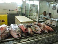 Mesmo com preços estáveis, pescados seguem fora da ceia