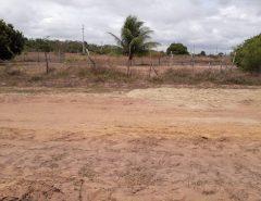 Dois corpos são achados em estrada de terra na Grande Natal