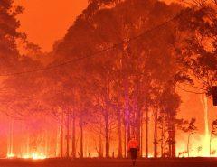Tragédia: Incêndios na Austrália matam 17