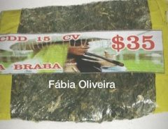 SELO DE QUALIDADE: Rosto de Ludmilla estampa malotes da 'verdinha' vendida pelo tráfico do Rio