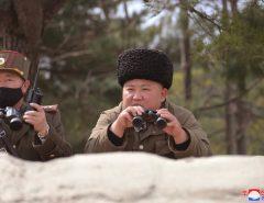Coreia do Norte não tem casos de coronavírus e intriga o mundo