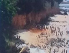 TRAGÉDIA: Parte de falésia desmorona em Pipa e mata três pessoas