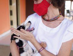 Parabéns: Mossoró Isolda destina emenda para castramóvel