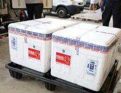 FIQUE LIGADO: RN recebe 156 mil doses de vacinas em 4 dias