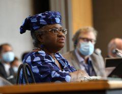 COMÉRCIO EXTERIOR: Quem é Ngozi Okonjo-Iweala, a nova chefe da OMC
