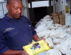 ÁFRICA: ONU: Novo plano mira paralisar crime organizado e terrorismo na África
