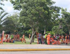 """""""ENTRE ASPAS"""": Garis fazem greve"""