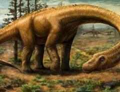 PATAGÔNIA: Titanossauro descoberto na Argentina é exemplar mais antigo da espécie