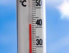 MUNDO: Regiões tropicais podem ficar inabitáveis com aquecimento, diz estudo