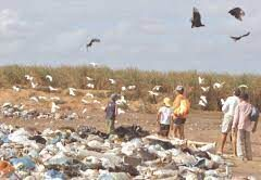 Idema determina paralisação e MPRN investiga possíveis crimes em usina que virou problema ambiental em Monte Alegre